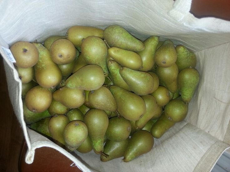 20 lbs of pears for perry