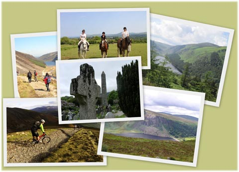 day tours wicklow