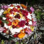 edible-flowers-cake