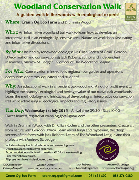 A guided walk in the woods with ecological experts.