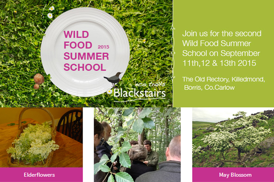 wildfood-summer-school