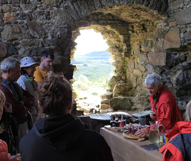 Irelands Ancient Feast Sea Gardener Forage and Feast EcoActiveEvents