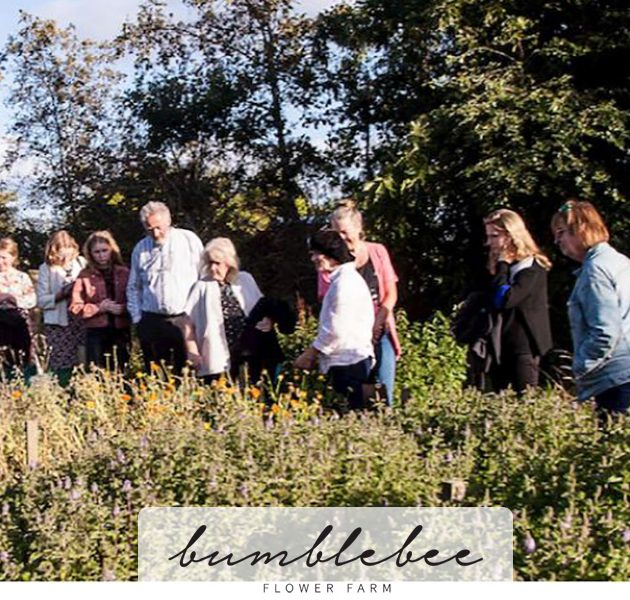 Open Day at Bumblebee Flower Farm